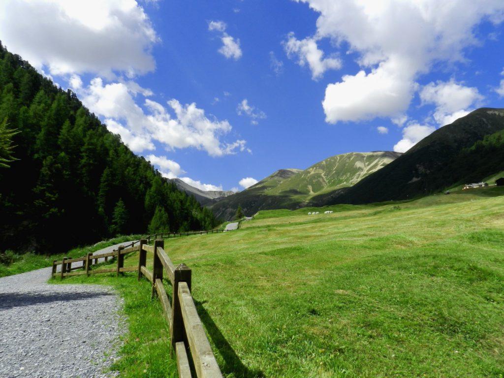 Foto di Livigno estate