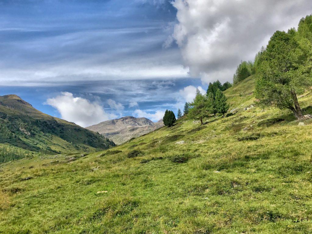 In questa foto un stupendo panorama di montagne dell'Alta Valtellina